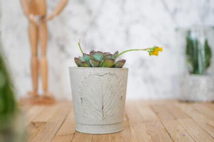 DIY Beton Blumentopf mit Blatt Prägung im Botanical Style