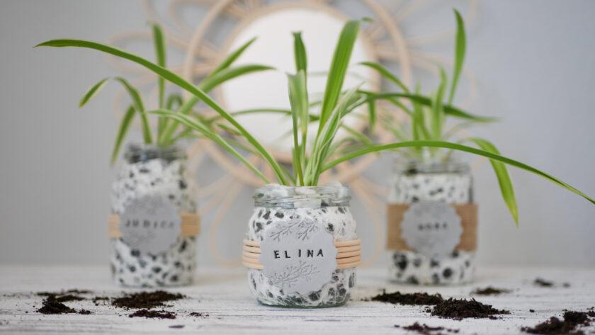 DIY Upcycling Blumentopf aus Altglas und lufthärtendem Ton